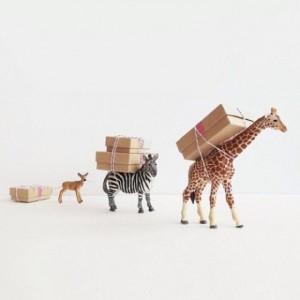 idee-emballage-cadeau-originale-animaux-580x580
