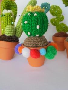 Cactus en crochet1