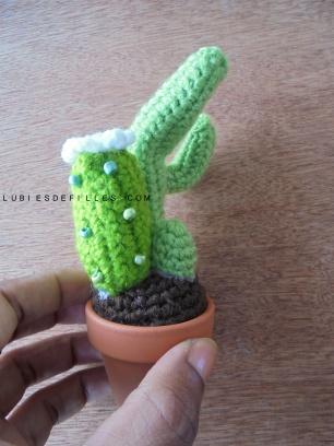 Cactus en crochet8